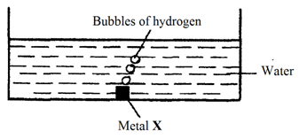 The diagram below shows a metal X reacting with water. Which of the following could be X?
